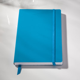 Ecosystem Flexi Ruled Journal in Lagoon Medium