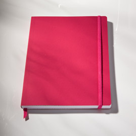 Ecosystem Flexi Ruled Journal in Watermelon Small